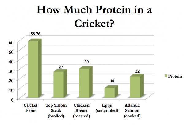 z-cricket-flours-How-Much-Protein-in-a-Cricket-600x408